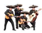 wedding reception entertainment - mariachi band