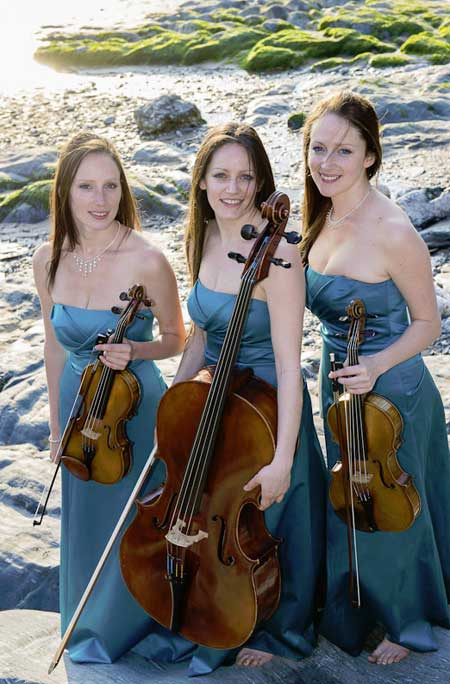 String Trio for hire